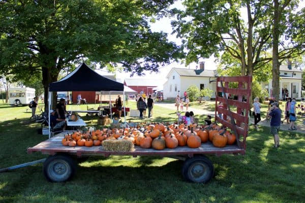 fall festivals in ann arbor